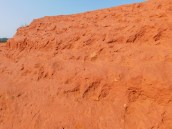 Little Red Desert 6