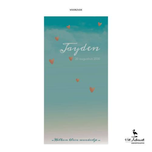 Jayden_web-vz