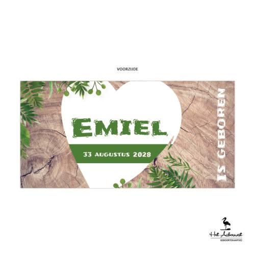 Emiel_web-vz
