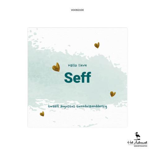 Seff_web-vz