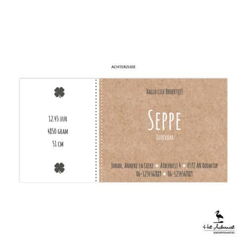 Seppe_web-az