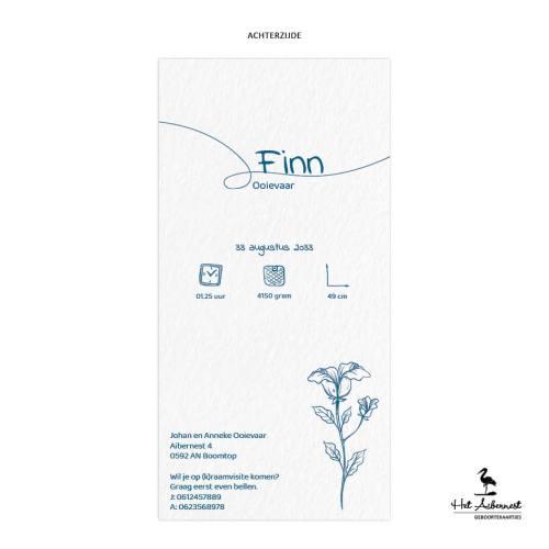Finn_web-az
