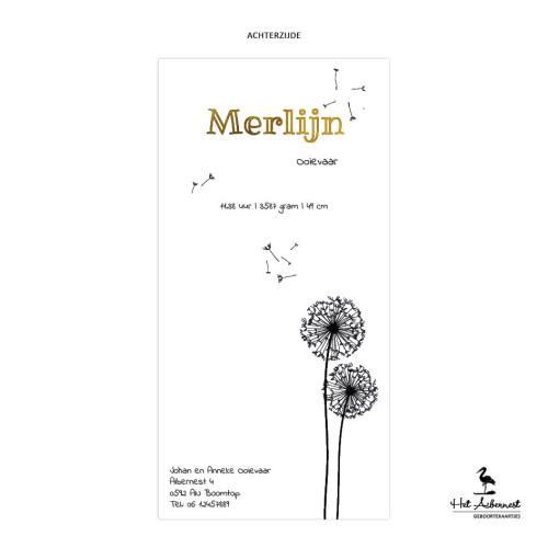 Merlijn_web-az