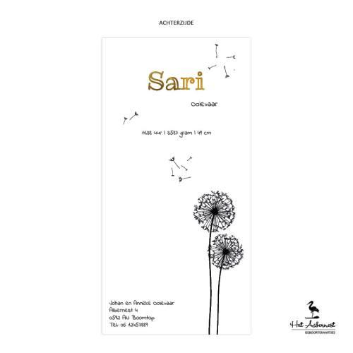 Sari_web-az