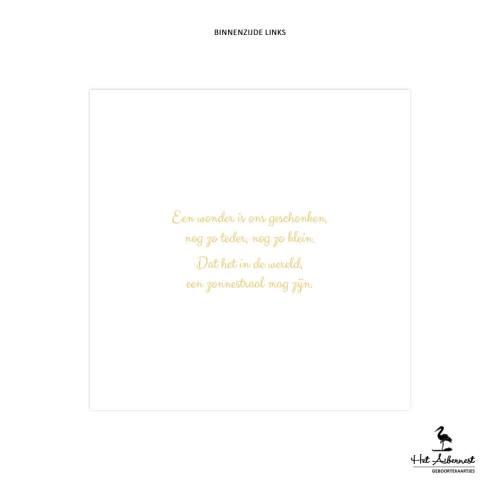 Senna_web-bl