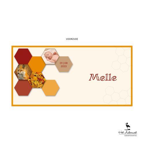 Melle_web-vz