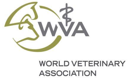 Wereld dierenartsen organisatie onderscheidt Anoxia-dierenarts Anette van der Aa
