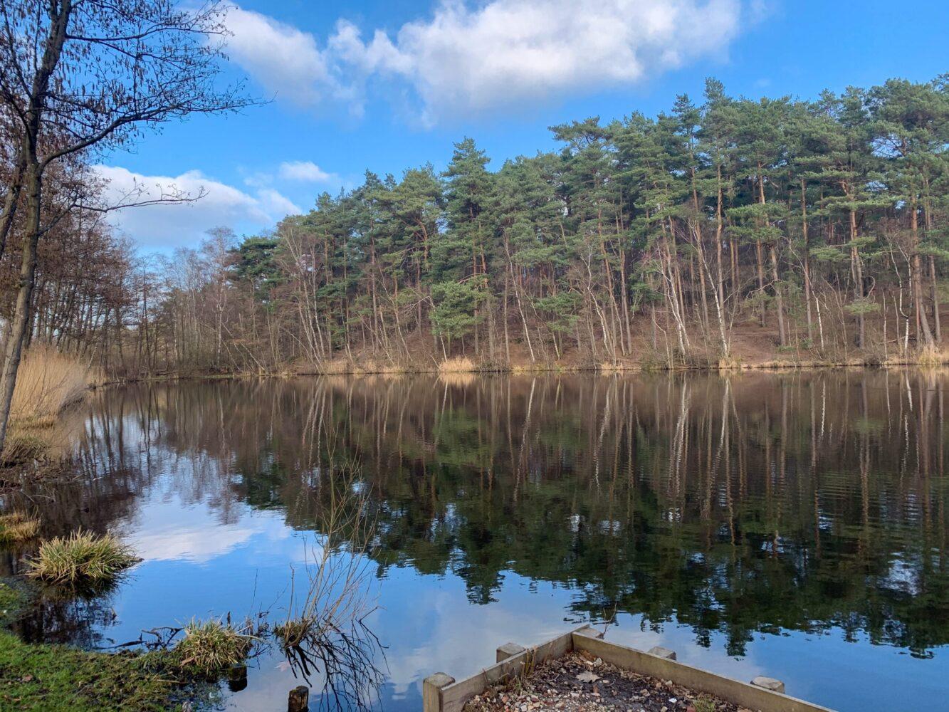Het Gezinsleven - Uitstapjes - Bezienswaardigheden - Top 10 Bezienswaardigheden in Limburg - Brunssummerheide bij het meer