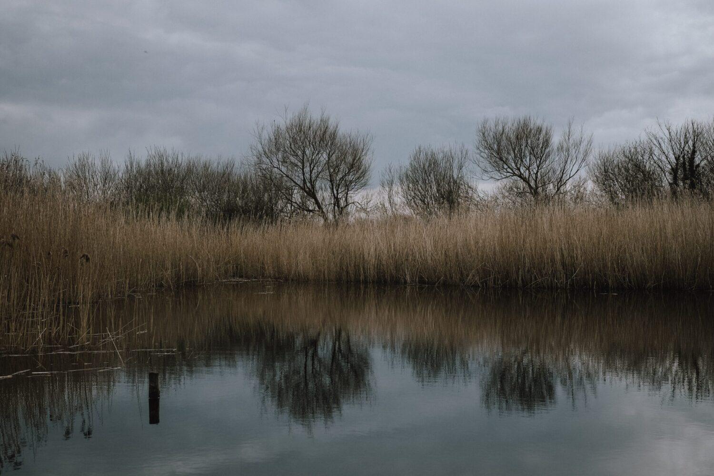 Het Gezinsleven - Uitstapjes - Natuur - De natuur in Zuid-Holland - Natuur vanaf het water