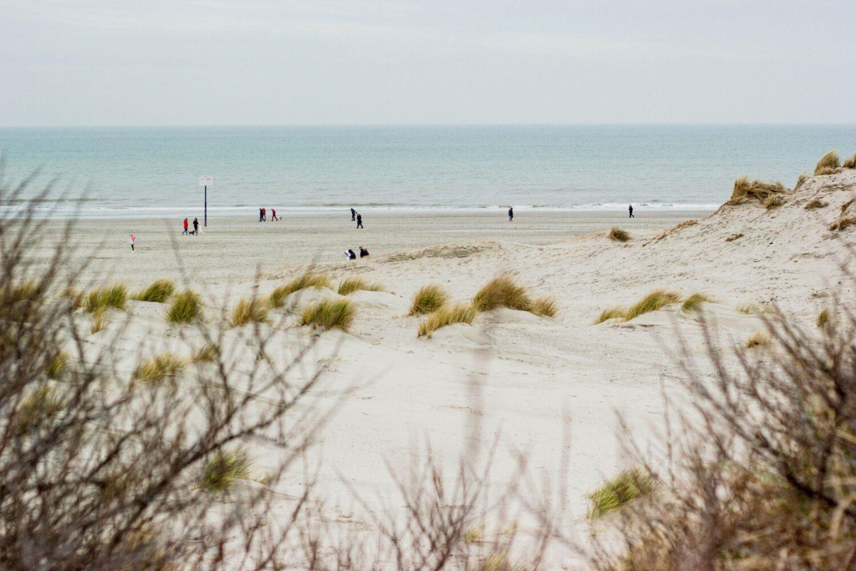 Het Gezinsleven - Uitstapjes - Natuur - De natuur in Zuid-Holland - Strand bij Hoek van Holland