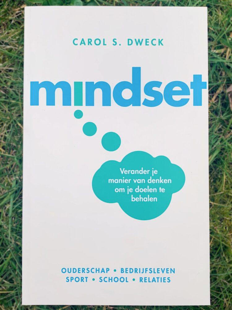 Het Gezinsleven - Lifestyle - Hobby's - Persoonlijke ontwikkeling, boeken top 5 - Voorkant boek Mindset