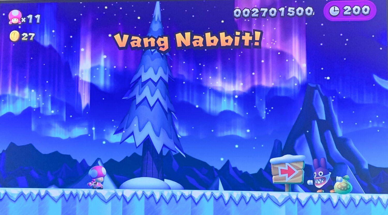 Het Gezinsleven - Gezinsactiviteiten - Media en Techniek - New Super Mario Bros. U Deluxe - Tijd om Nabbit te vangen