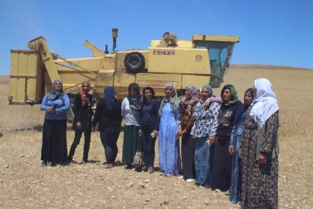 Работницы женского сельскохозяйственного кооператива, Рожава