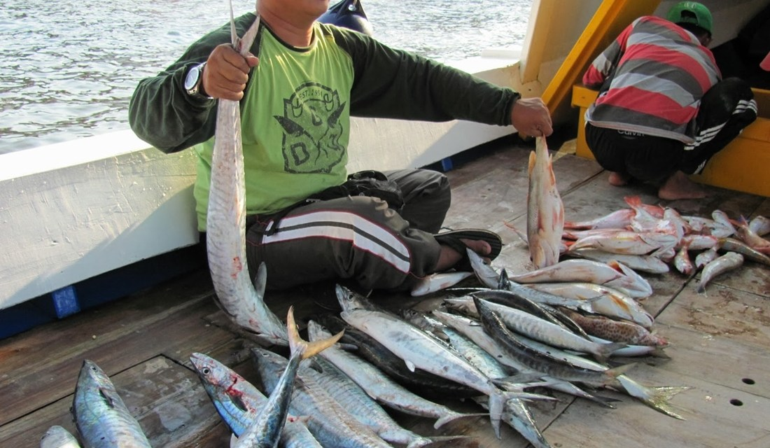Panduan Lengkap Cara Mancing Ikan dengan Teknik Konceran