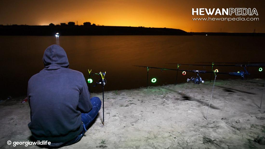 8 Nasihat dan Pantangan untuk Pemancing menurut Mitos dan Kepercayaan