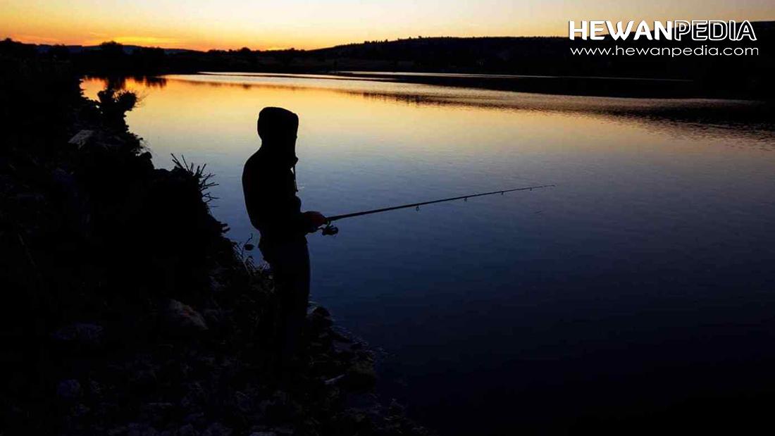 5 Mitos Kepercayaan Turun Temurun Mengenai Mancing Ikan