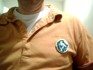 My Podcamp 2008 badge from Grannymar