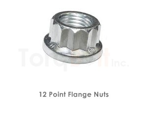 12 Point Flange Nuts