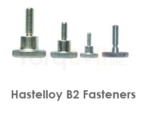 Hastelloy B2 Fasteners Heavy Hex Bolts Screws Nuts Washers