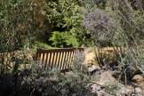 Blue-Mountains-Botanic-Gardens-29