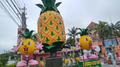 nago-pineapple-park