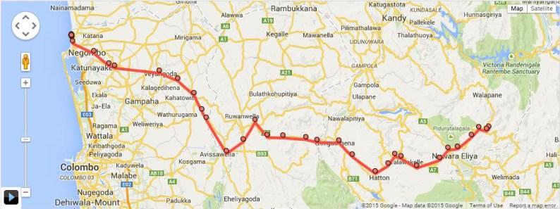 HDYTI Nuwara Eliya to Negombo