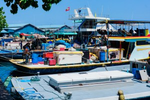 Malé Fish Market Maldives