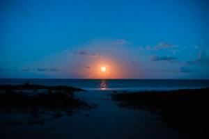 Orange moon rising in Zanzibar at Hakuna Majiwe | @dipyourtoesin