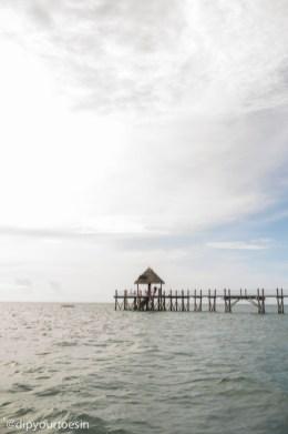 Jetty view from Zanzi Resort