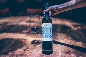 A Multisensory Wine Tasting Experience at Mas Llunes, Empordà