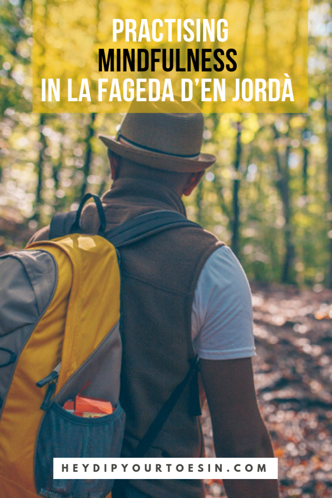 Mindfulness in the forest of La Fegada d'en Jorda during Catalonia road trip