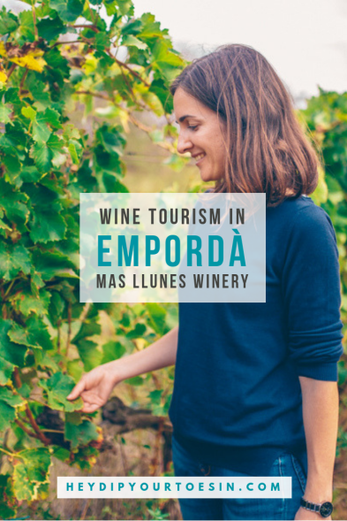 Visiting wineries in DO Empordà | Mas Llunes Winery