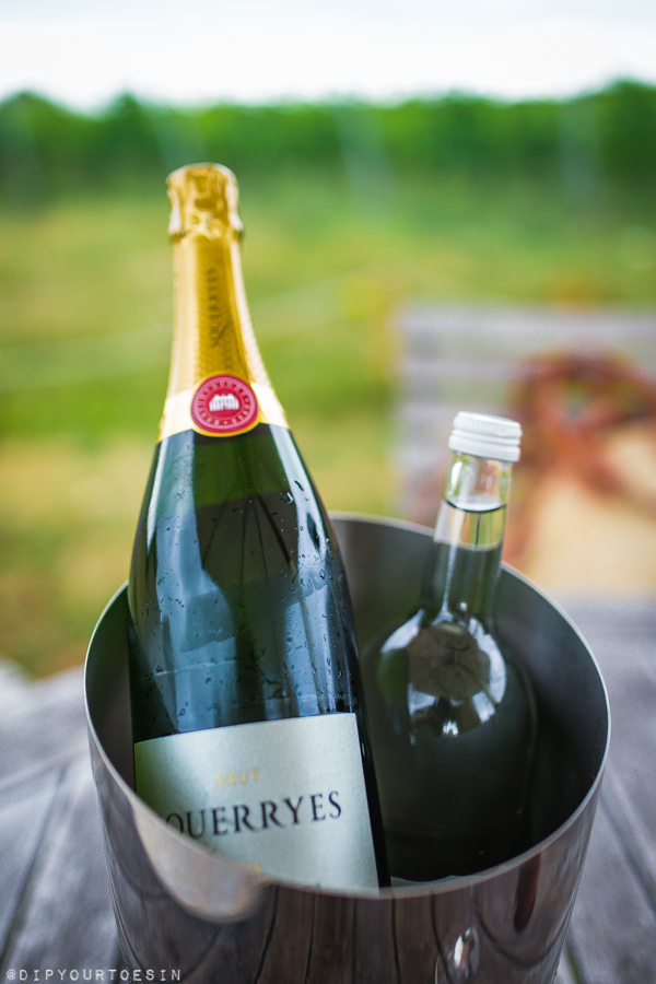 Brut 2016 Vintage Reserve by Squerryes Wine Estate, Westerham, Kent