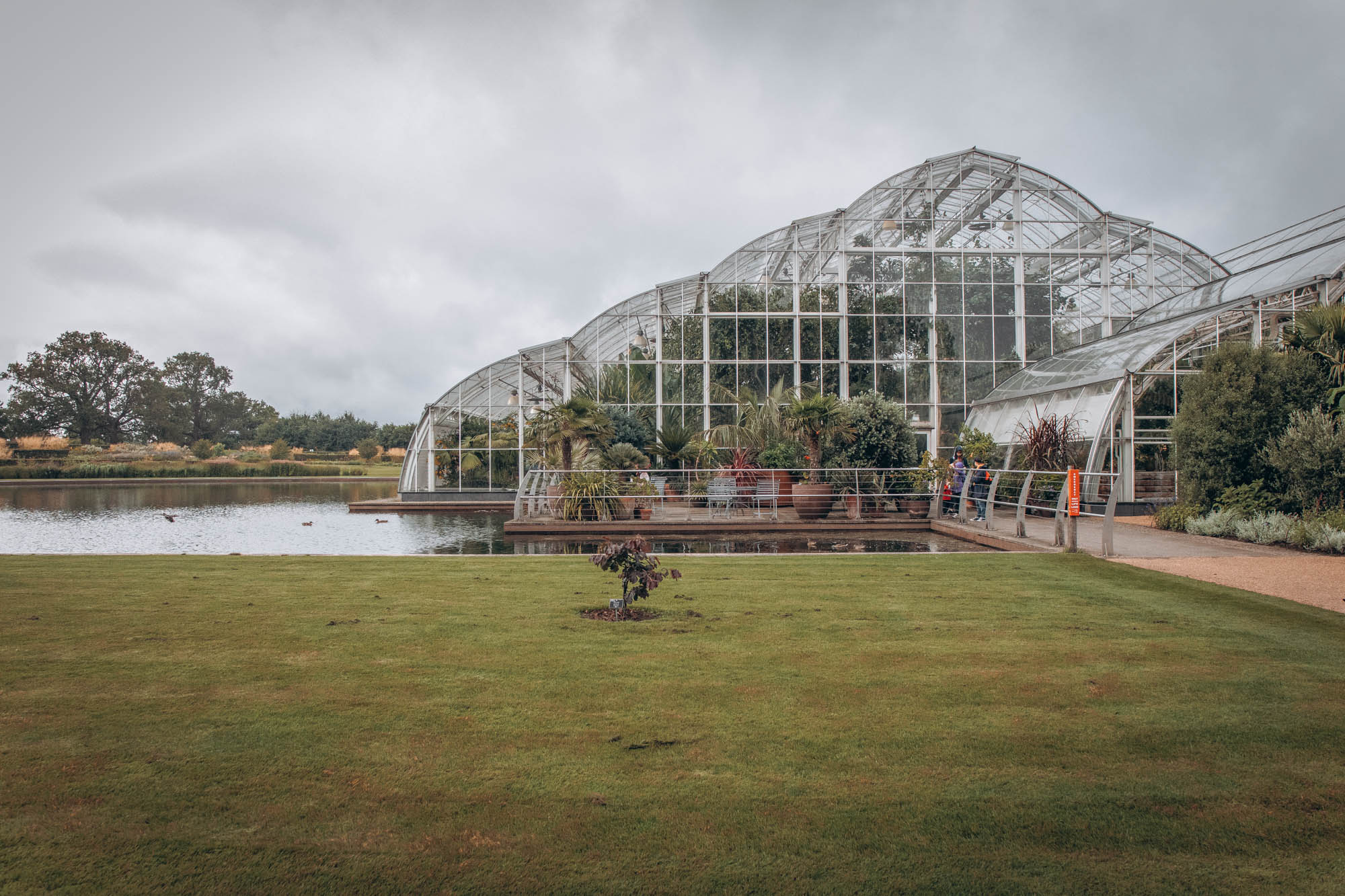Outside view of The Glasshouse   RHS Garden Wisley