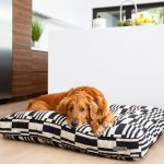 20 Stylish Boho Dog Beds You And Your Fur Kids Will Love Hey Djangles