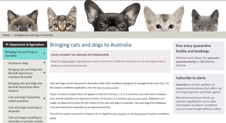 寵物 出國 澳洲 寵物旅遊