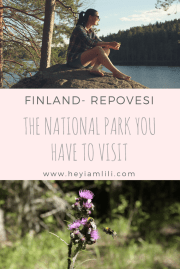 Repovesi - One of the National Parks You Have to Visit in Finland