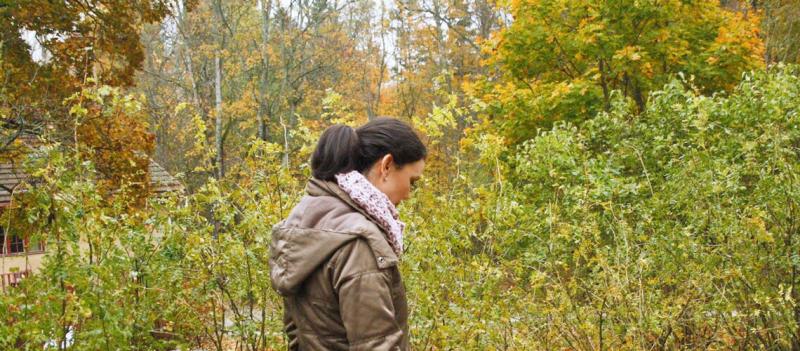 Dicas e Atividades de Outono na Finlândia