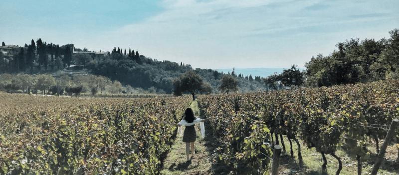 Fonterutoli – Hospede-se em uma vinícola centenária