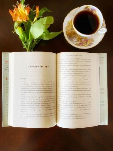 Novel by Anita Abriel