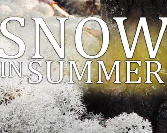 Snow in Summer Feature