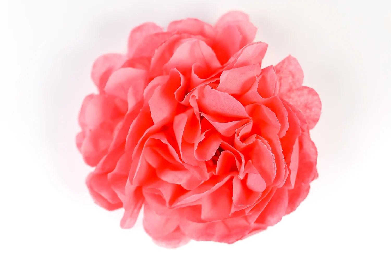 How To Make Tissue Paper Flowers Four Ways Hey Let S Make Stuff
