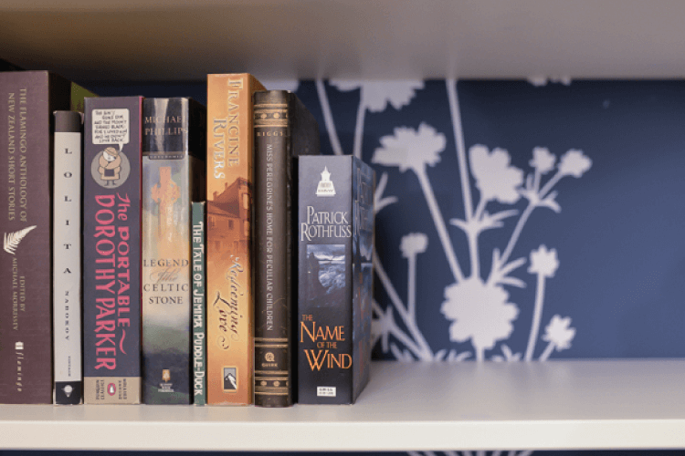 bookshelf with books and decal background on wall