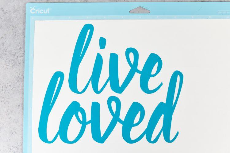 Lived Loved Vinyl