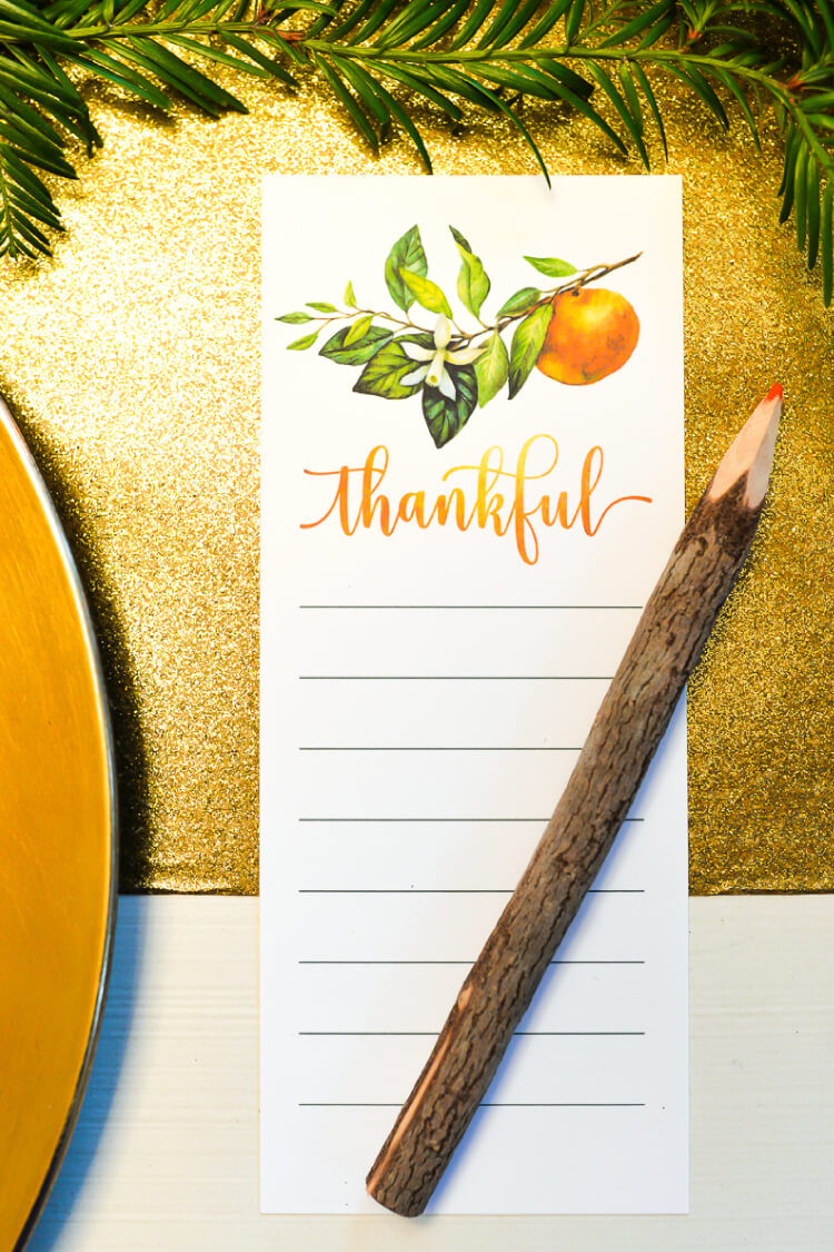 Bring the outdoors in by shopping your yard for your thanksgiving table decor this year! Thanksgiving on a budget doesn't have to be skimpy -- by using what you already have along with Chinet® plates, cups, and cutlery, you can set a table that everyone will remember.