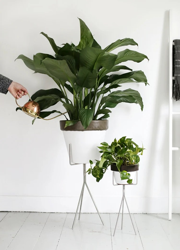 Leather Trim Planters - The Merry Thought