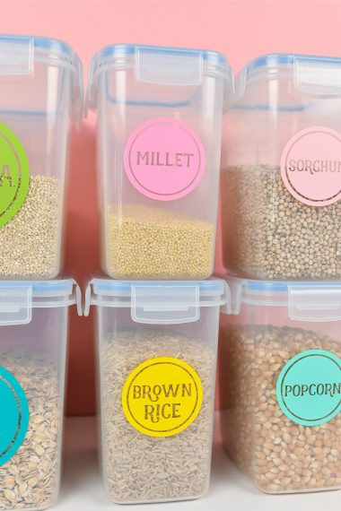 Plastic can be one of the easiest surfaces for adhesive vinyl! This application is perfect for pantry labels and other organization around your home—get all my best tips and tricks for using vinyl on plastic.