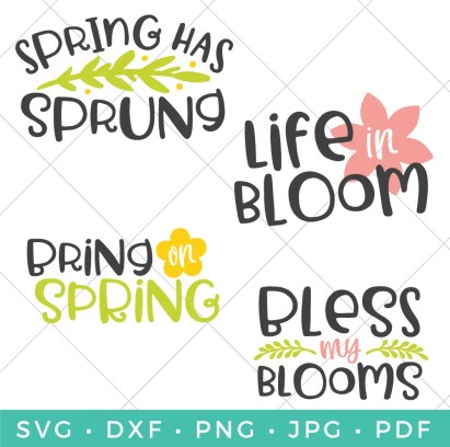 Sunshine, blooming flowers, singing birds and blue skies - I love spring! Let's celebrate the season with this fresh and trendy Spring SVG Bundle! Add some color to your coffee mugs, gardening totes, picnic blankets and so much more.