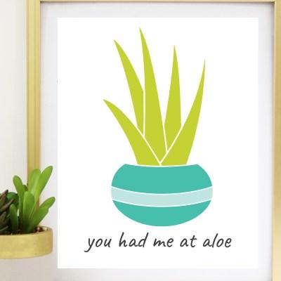 Cactus & Succulent SVG Bundle