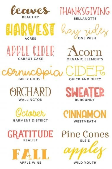 Ready to craft for fall? These fall fonts are perfect for all of your cutting machine crafts, including hoodies, mugs, scarves, and more! Grab your apple cider and start crafting!
